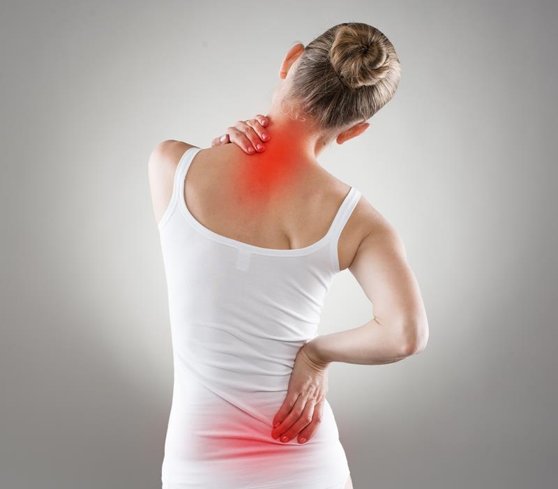 chiropractic services  Neenah, WI